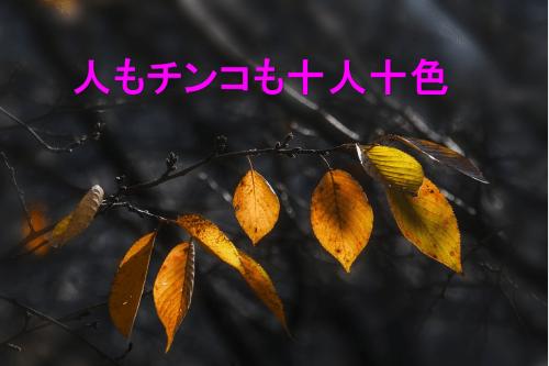 ペニス 日本 人