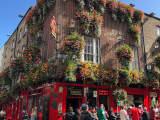 ギネスだけじゃない本場アイルランドのビール7選!注ぎたてが飲めるアイリッシュパブをイギリス在住者がご紹介!のサムネイル画像