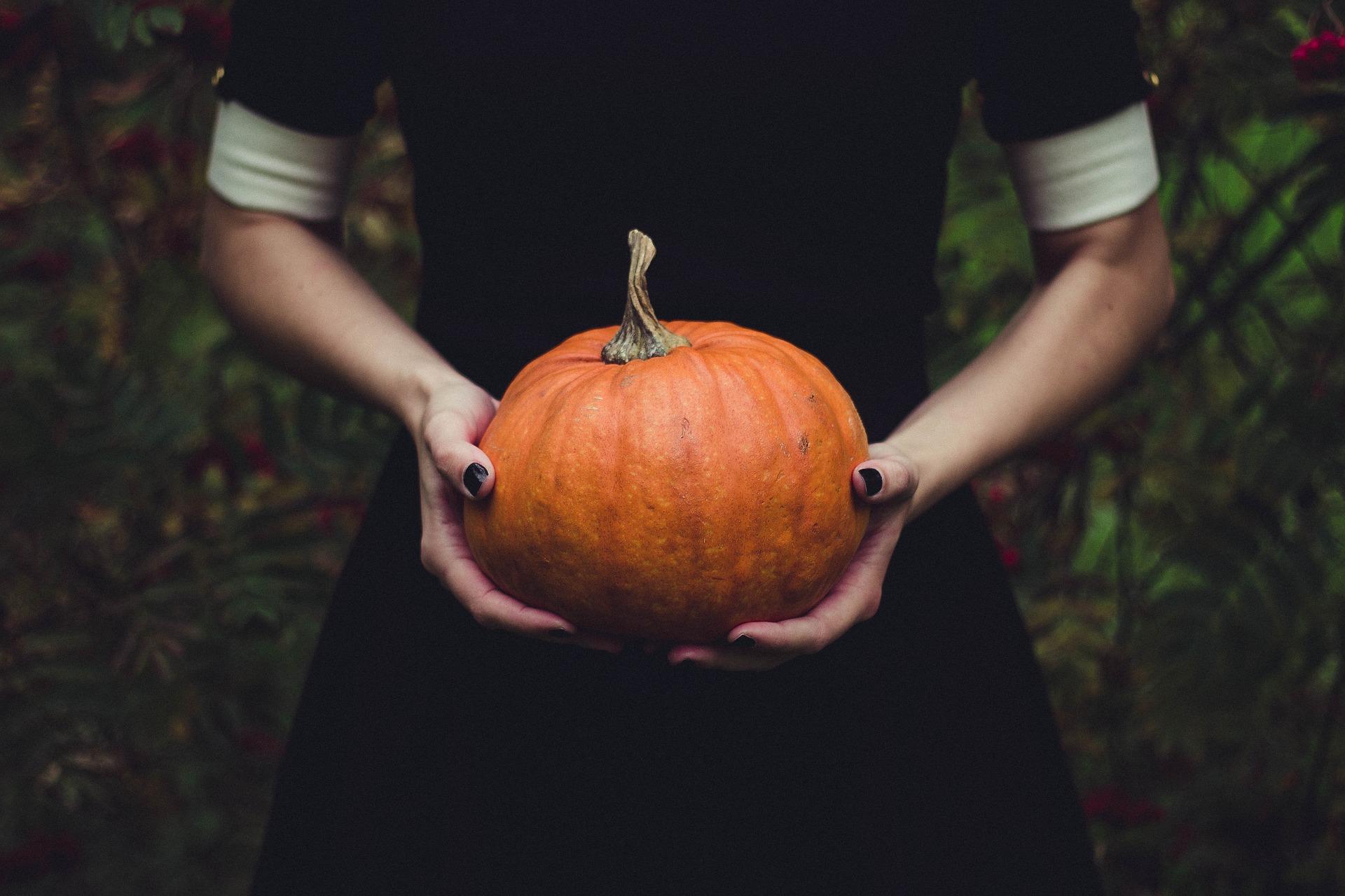 炭水化物 かぼちゃ