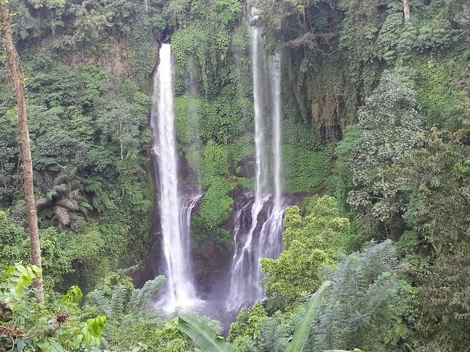 バリ島の滝