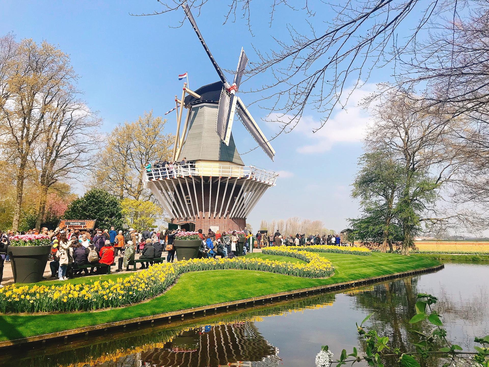 オランダ アムステルダム キューケンホフ公園