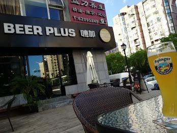 上海のビール