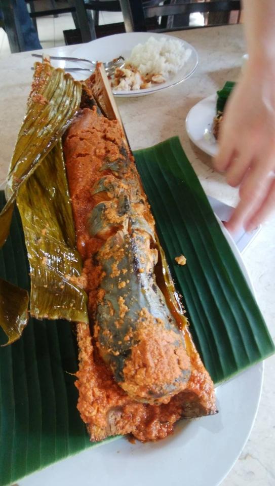 PonDok ikan bAkAr kalimAntan料理なまず
