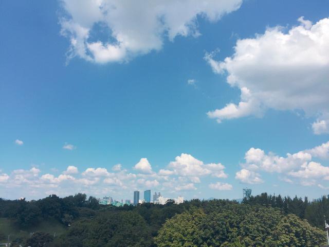ソウルの夏