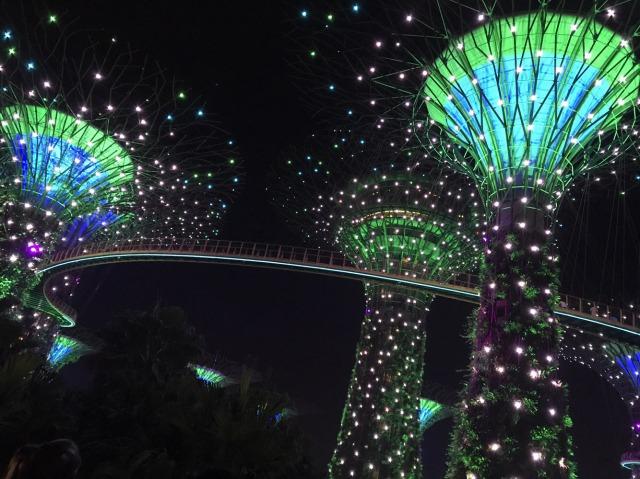 シンガポールのガーデンズバイザベイ