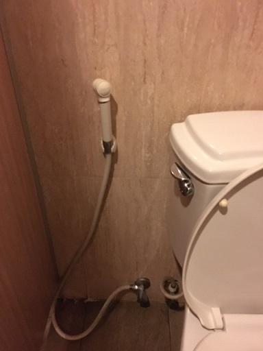 トイレ脇にあるホース
