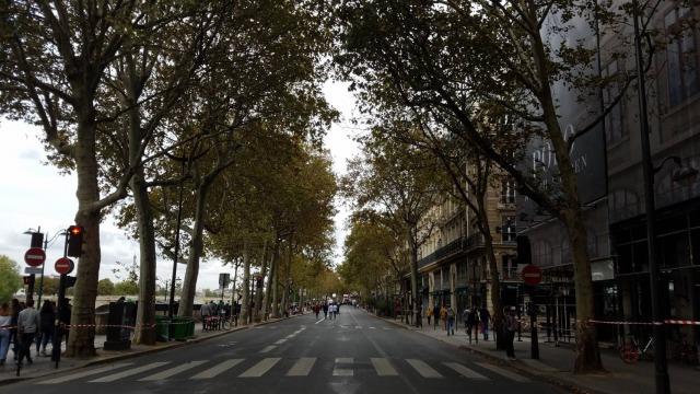 フランスの道