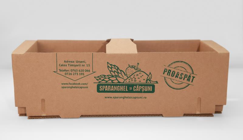 design ambalaj carton personalizat