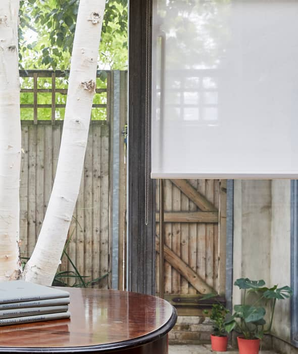 French windows with white roller blinds