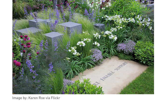 Lavender and white flowers at Chelsea flower show