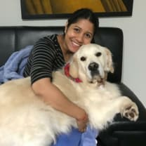 Thumbnail of Priya R.