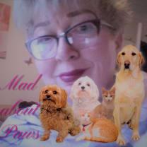Thumbnail of Ilona B.