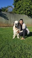 Katherine T - Profile for Pet Hosting in Australia