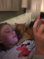 Justine D - Profile for Pet Hosting in Australia