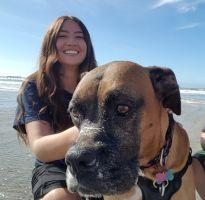 Araceli F - Profile for Pet Hosting in Australia