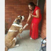 Crystal R - Profile for Pet Hosting in Australia