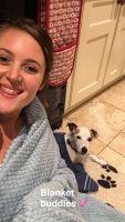 Ellen B - Profile for Pet Hosting in Australia