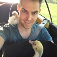 Steve Y - Profile for Pet Hosting in Australia