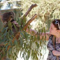 Leanne B - Profile for Pet Hosting in Australia