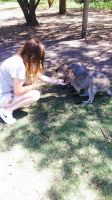 Krystal S - Profile for Pet Hosting in Australia