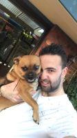 Joshua D - Profile for Pet Hosting in Australia