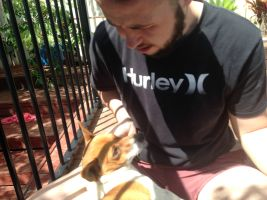 Bradley  M - Profile for Pet Hosting in Australia
