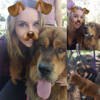 Anrie  P - Profile for Pet Hosting in Australia