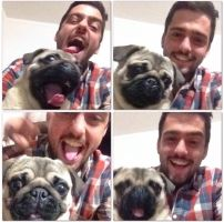 Cristian P - Profile for Pet Hosting in Australia