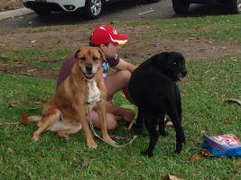 Brendan L - Profile for Pet Hosting in Australia