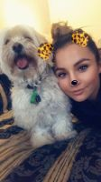 Caitlin  W - Profile for Pet Hosting in Australia