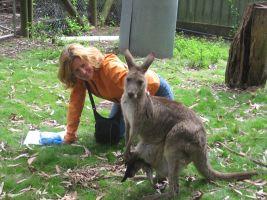 Silvia M - Profile for Pet Hosting in Australia
