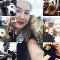 Kaitlan W - Profile for Pet Hosting in Australia