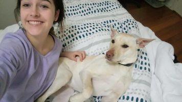 Caity O - Profile for Pet Hosting in Australia