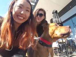 BRENDA F - Profile for Pet Hosting in Australia