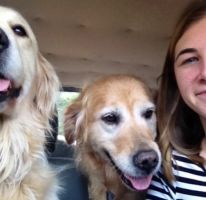 Emily D - Profile for Pet Hosting in Australia