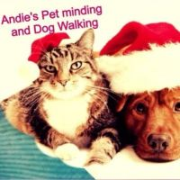Andie N - Profile for Pet Hosting in Australia