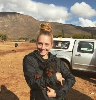 Caitlin M - Profile for Pet Hosting in Australia
