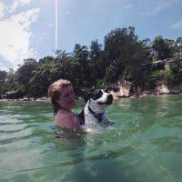 Daisy L - Profile for Pet Hosting in Australia