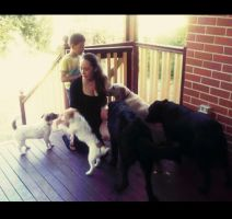 Natalie C - Profile for Pet Hosting in Australia