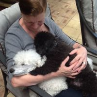 Shirley R - Profile for Pet Hosting in Australia