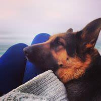 Marta S - Profile for Pet Hosting in Australia