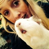 Amy L - Profile for Pet Hosting in Australia