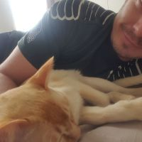 alex c - Profile for Pet Hosting in Australia