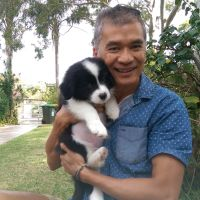 Minh T - Profile for Pet Hosting in Australia