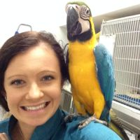 Allisha M - Profile for Pet Hosting in Australia