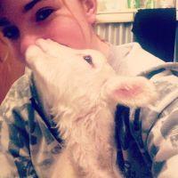 Sarah C - Profile for Pet Hosting in Australia