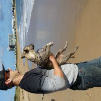 Brenton C - Profile for Pet Hosting in Australia
