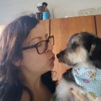 Amy T - Profile for Pet Hosting in Australia
