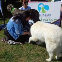 Carrie M - Profile for Pet Hosting in Australia