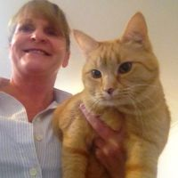 PEGGY N - Profile for Pet Hosting in Australia